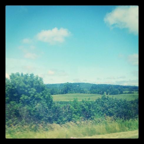 Wisconsin hills.